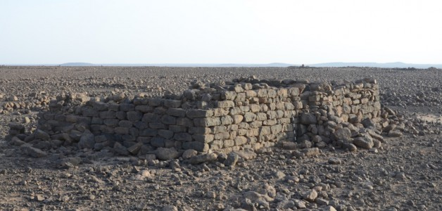 The Shubayqa Archaeological Project